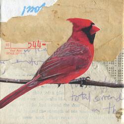 Cardinal 544