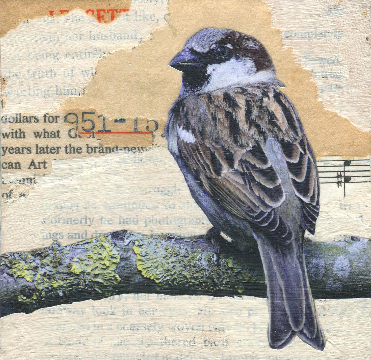Sparrow 951 Redux