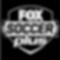 Fox_Soccer_Plus2.png