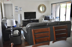 TV and Recreation Room
