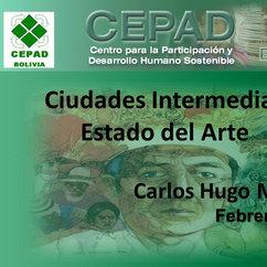 Carlos Hugo Molina_Ciudades Intermedias Estado del Arte