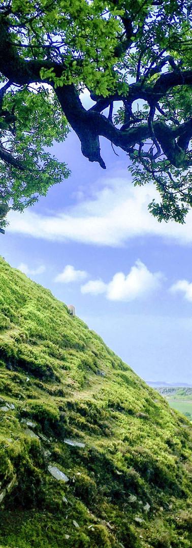9-mound-minAUG-Original.JPG
