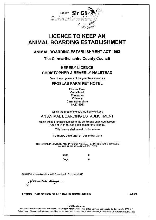 License 2019.jpg