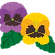 flower_pansy.png