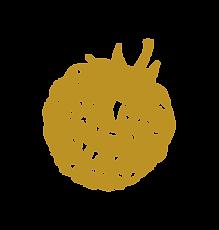 rasp-gold.png