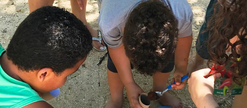 Visitantes do Parque Ecológico da Pampulha aprendem técnicas de plantio em oficina no local