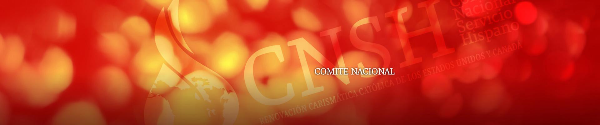header_comite_n