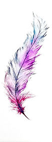pretty feather.jpg