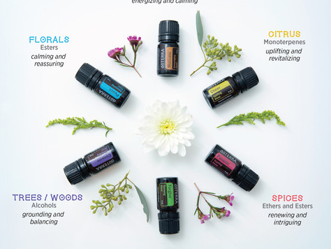 Essential Oils & The Emotional Benefits