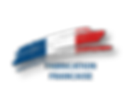 DSD-Français1.png