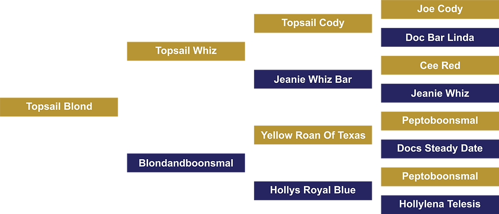 Topsail Blond.png