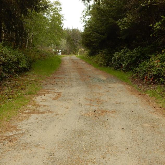 R Lane looking North.jpg