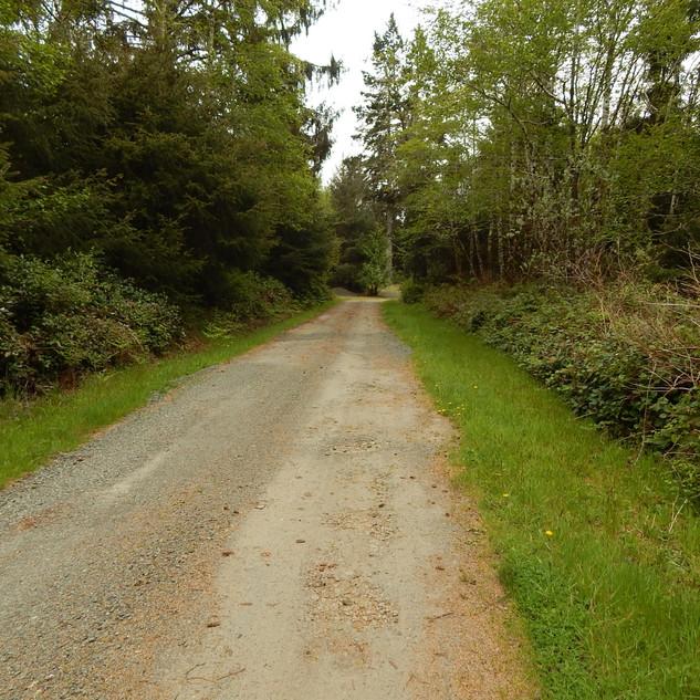 R Lane looking South.jpg