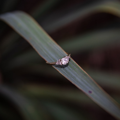 Engagement - Makamson