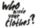 FashionRevoluton.png
