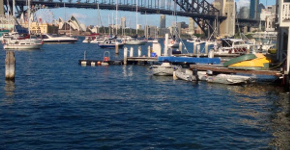 Sydney harbour from lavender bay