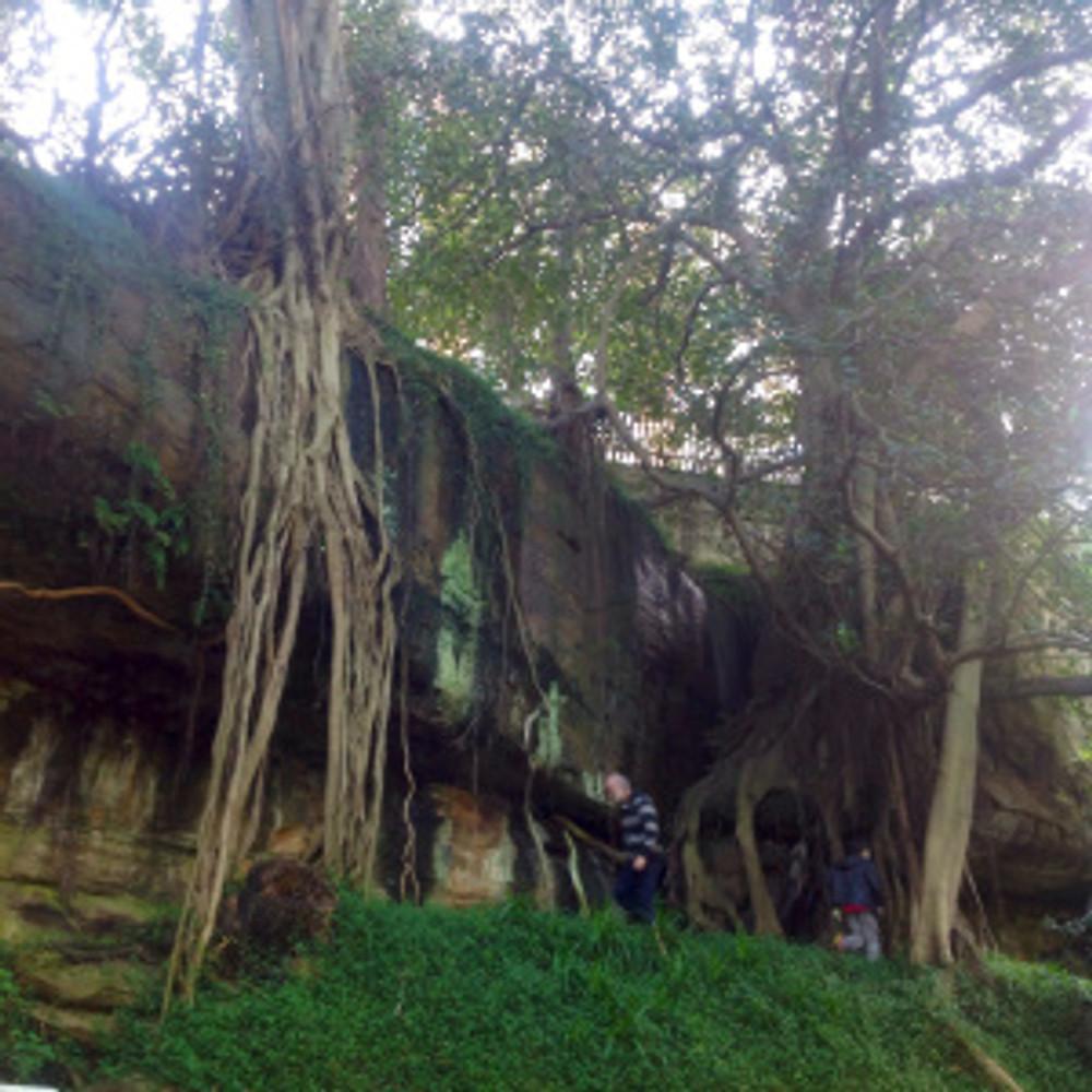 Natural rock pool in sandstone rock face watt park lavender bay