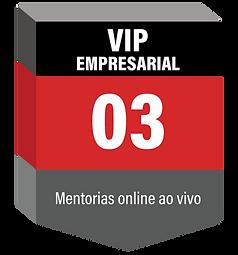 VIP EMPRESARIAL-10.png