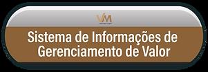 BOTÃO VMIS-19.png