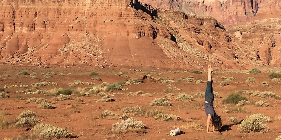 Living in Balance ~ Meditation & Asana Pranayama