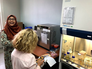 A subject matter expert conducts a laboratory hood assessment alongside a laboratory manager at the University of Malaysia Sabah's Biotechnology Research Institute. The assessment led to biosecurity improvements at the institute to protect against the misuse of dangerous pathogens.