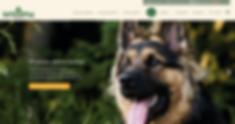 Zrzut ekranu 2020-05-22 o 01.15.51.png