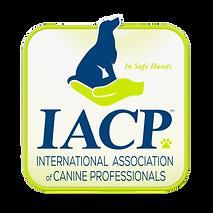 iacp-logo-member-icon-rgb-600x600-2-remo