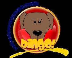 szkolenie psów warszawa, behawiorysta warszawa, szkolenie psów bingo,