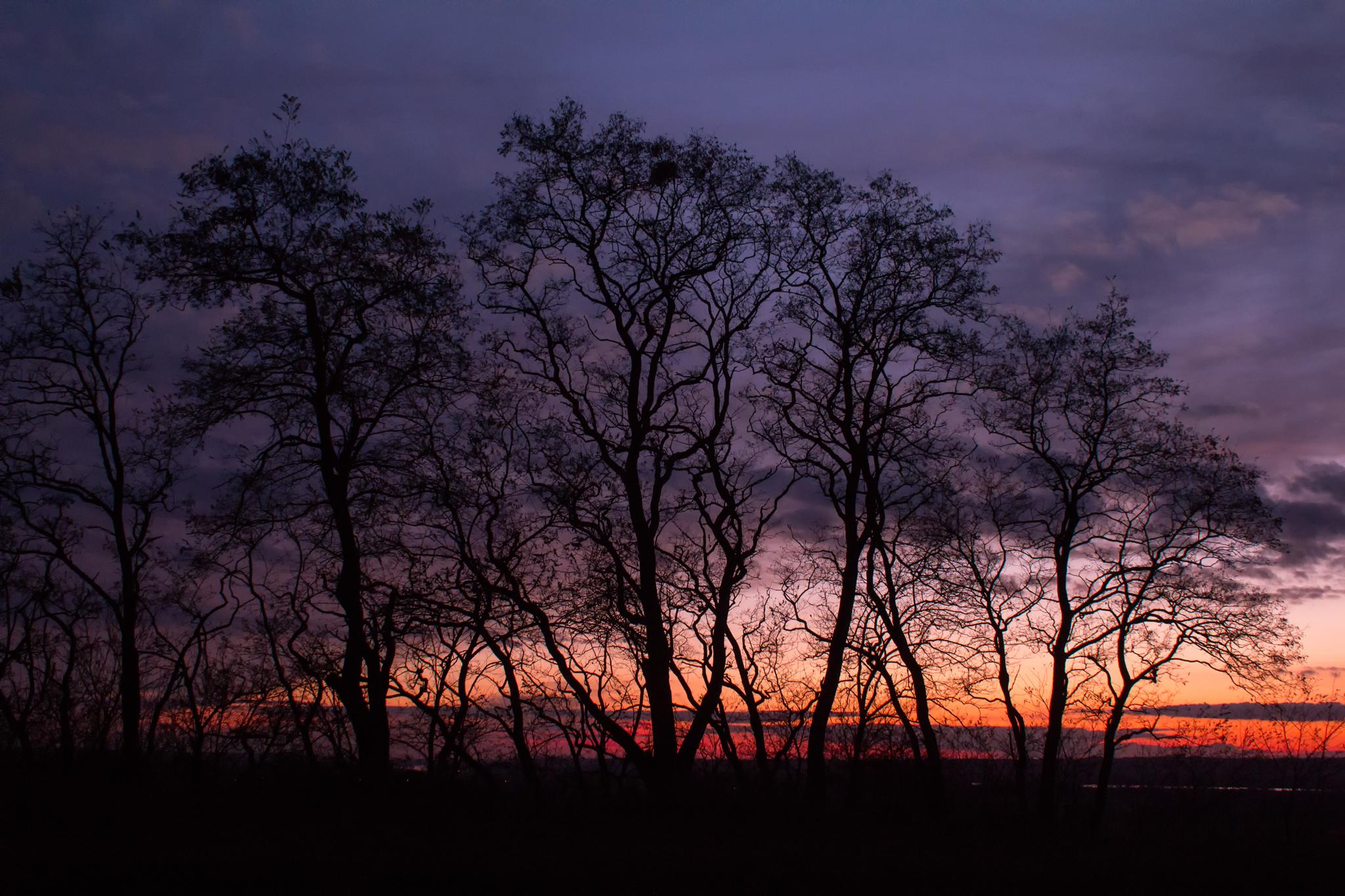 Zachód słońca w Dolinie Dolnej Wisły