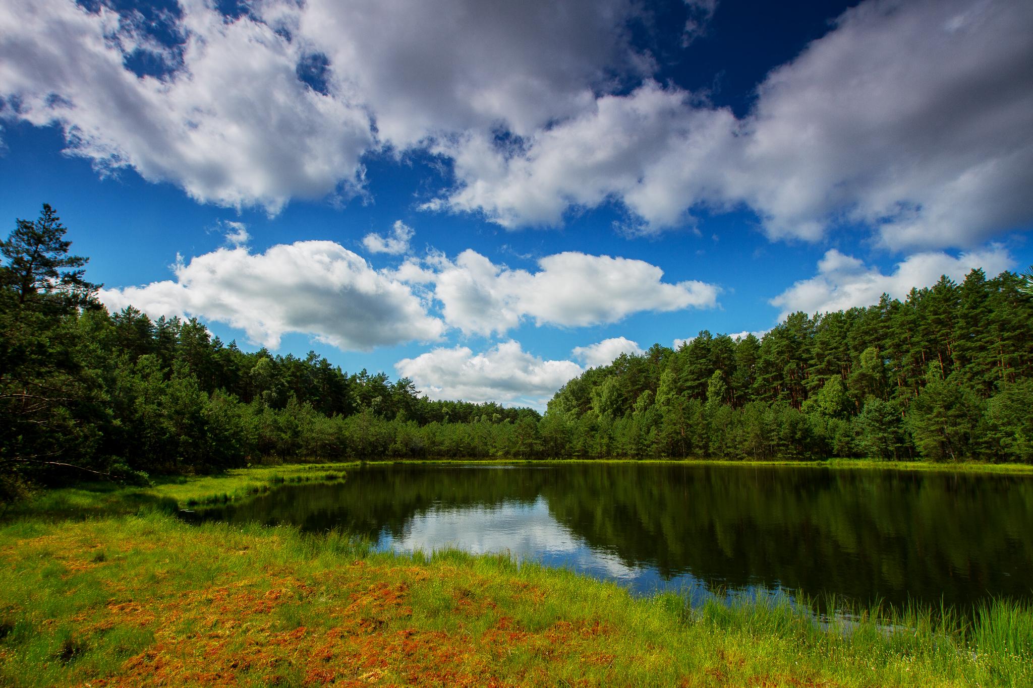 Dury - rezerwat przyrody