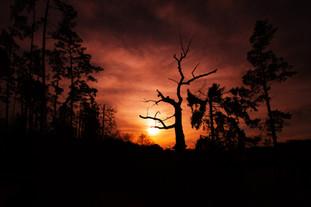 Zachód słońca w Starej Rzece