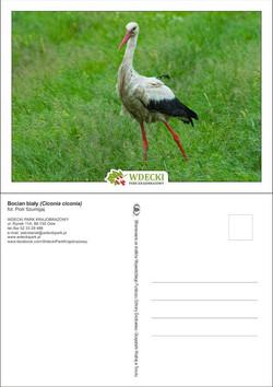 Wdecki Park Krajobrazowy - pocztówki