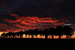 Burzliwy zachód słońca