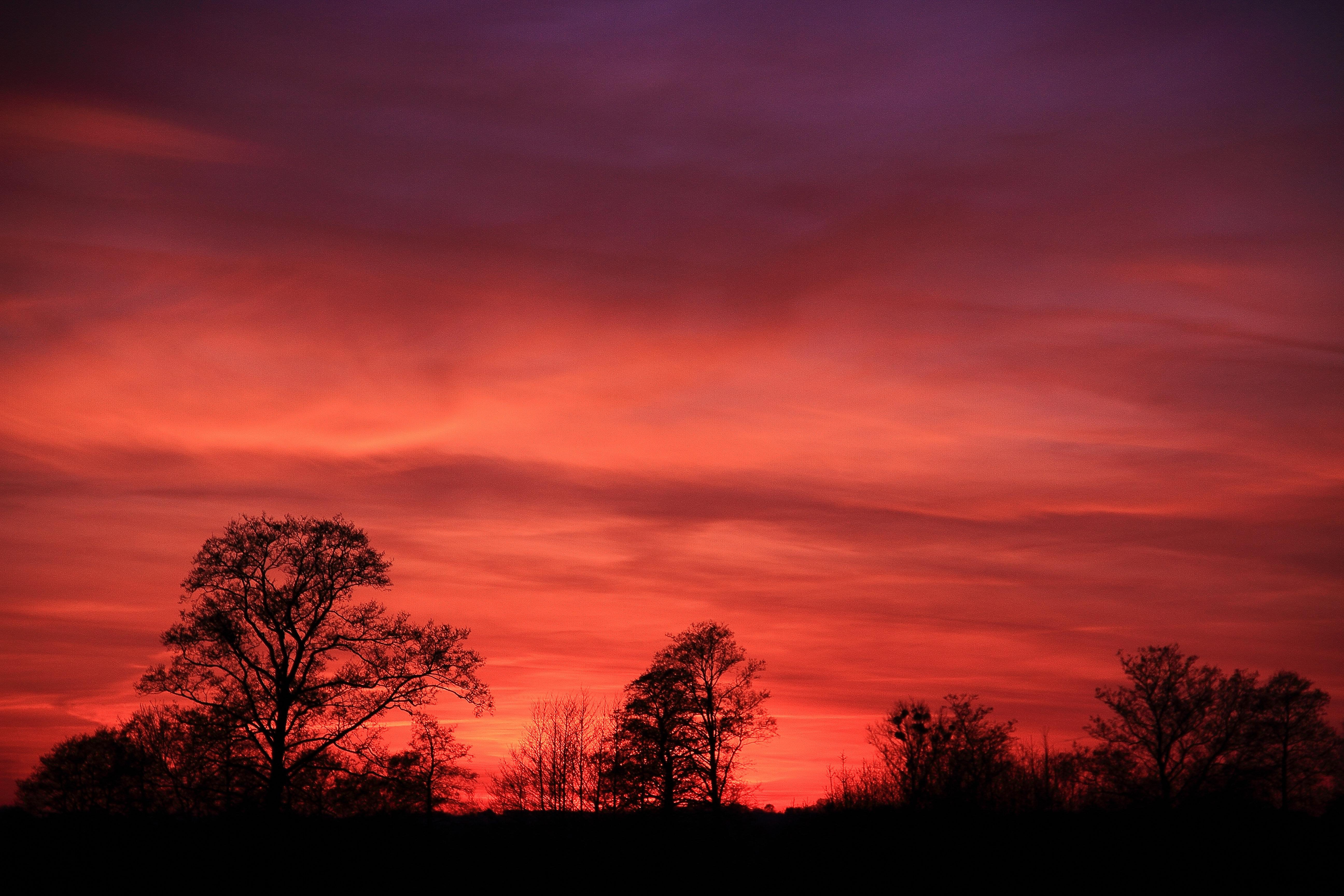 Dolina Dolnej Wisły - zachód słońca