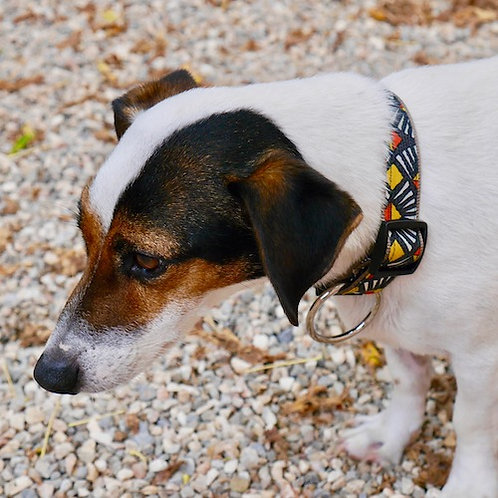 Collier pour chien made in France Tinou Click COLORI