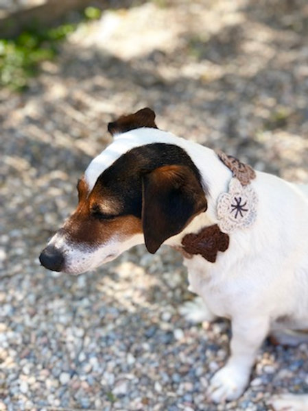 Collier pour chien en crochet CREME MARRON GALET