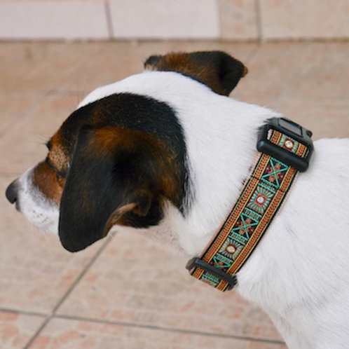 Collier pour chien made in France Tinou Click CASUAL
