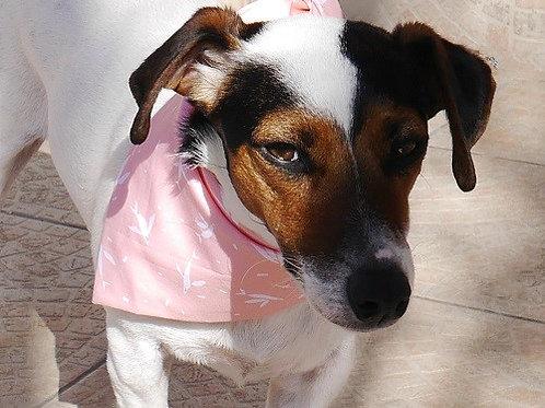Le Bandana pour chien à nouer Tinou-Gavroche Glam