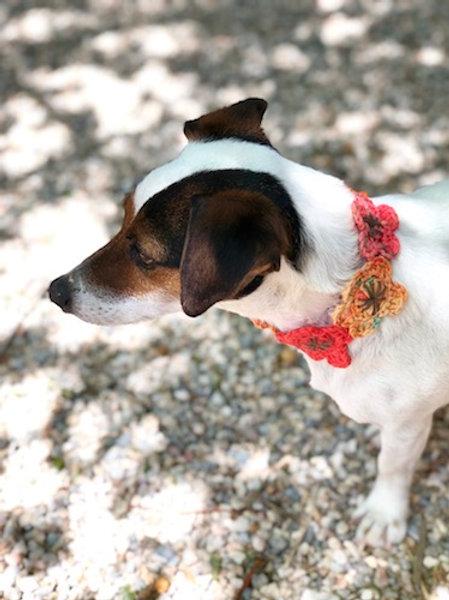 Collier pour chien en crochet ORANGE BEIGE COEUR