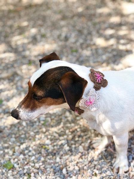 Collier pour chien en crochet GRIS PALE ROSE GALET