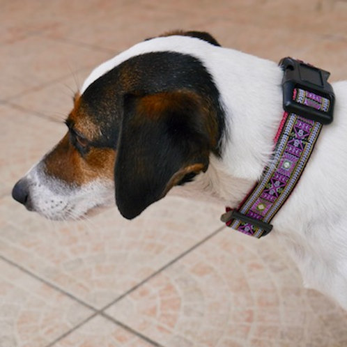 Collier pour chien made in France Tinou Click VIOLETTA
