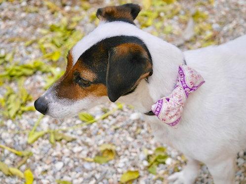 Noeud papillon pour chien DANDY ELEGANCE