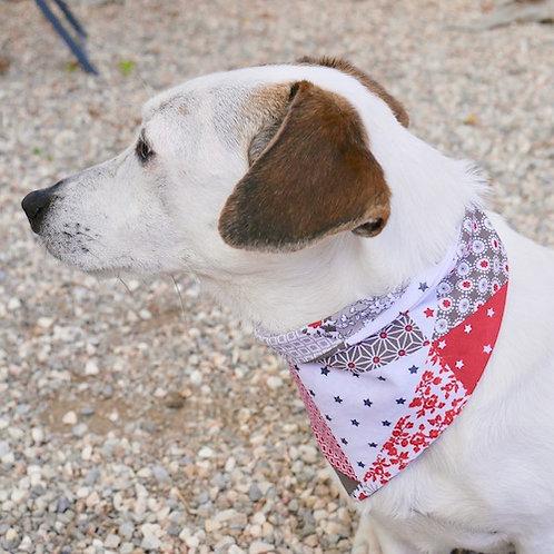 Le Bandana pour chien à nouer Tinou-Gavroche MODERN