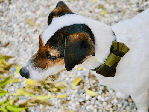 Noeud papillon pour chien DANDY ARMY