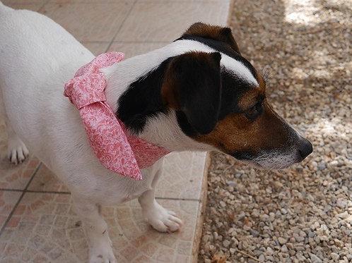 Le Foulard Pour Chiens. Le Tinou-foulard California