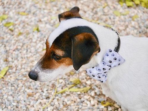 Noeud papillon pour chien DANDY DOGGY