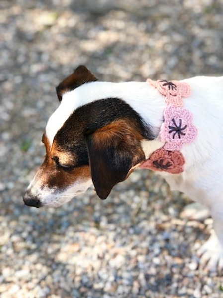 Collier pour chien en crochet MARRON MARRON GALET