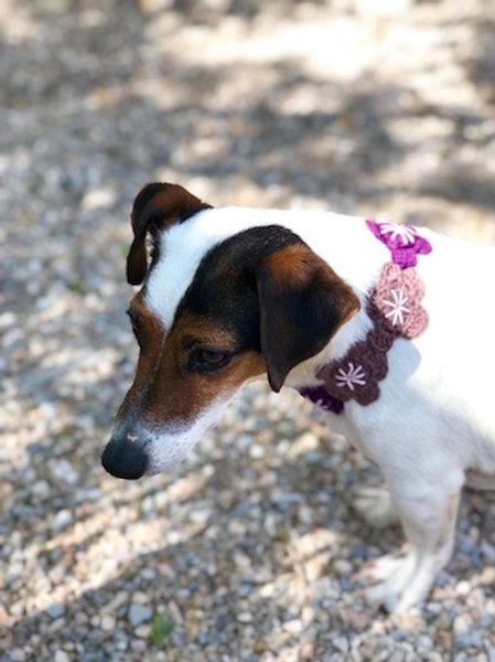 Collier pour chien en crochet MARRON ROSE VIOLET GALET