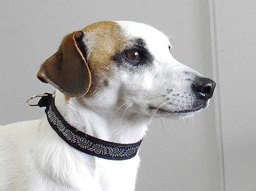 Collier  pour chien Fantasia