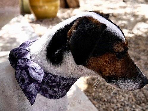 Le Foulard Pour Chiens. Le Tinou-foulard Barcelone